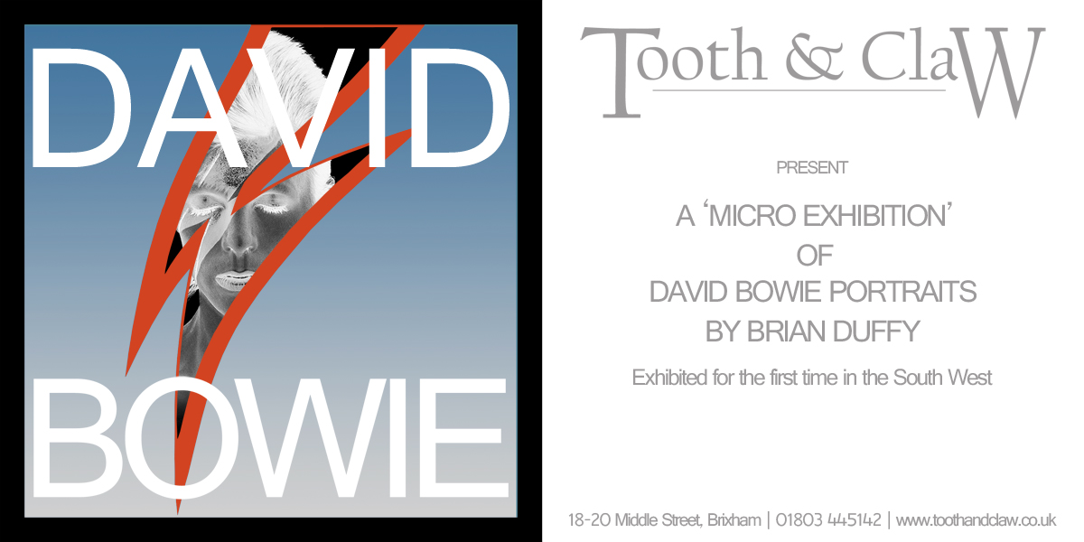 David Bowie at Tooth & Claw