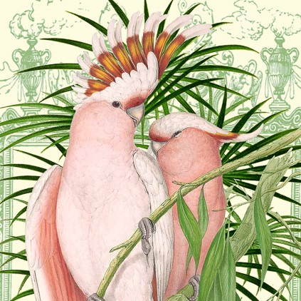 PINK-PARROTS-GREETINGS-CARD